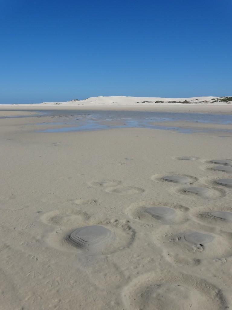 De Mond natuurreservaat, Zuid-Afrika