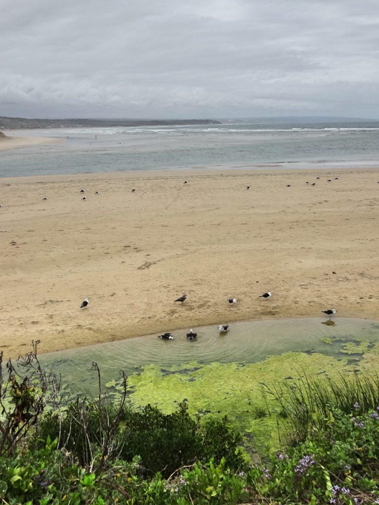 rivier en strand van Stilbaai Zuid Afrika